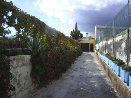 Finca en Centro, Guimar - Ref. SCFI0056