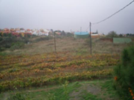 Casa con Terreno en El Sauzal - Ref. LC1CTR3235